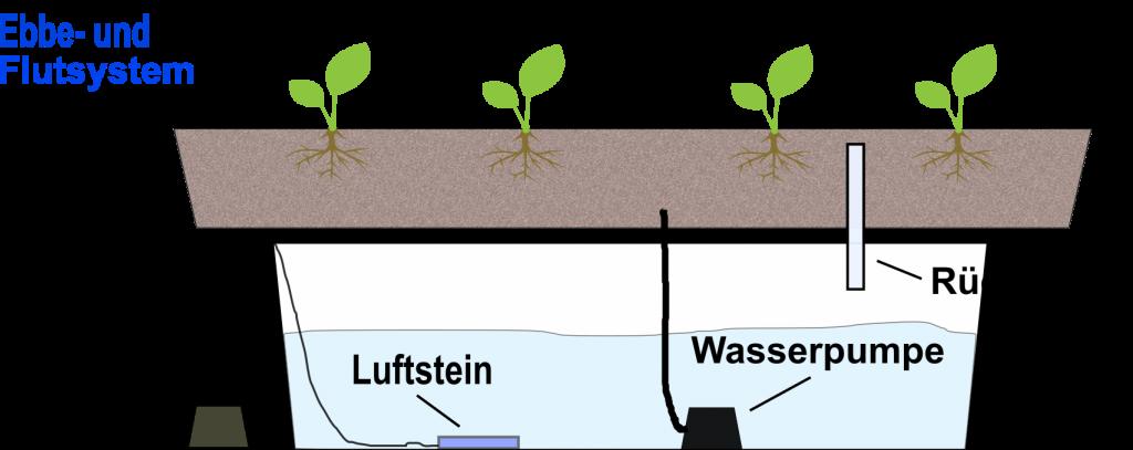 Ebbe- und Flutsystem - Nährlösung überflutet kurzzeitig den Pflanzenbehälter und ebbt dann wieder ab
